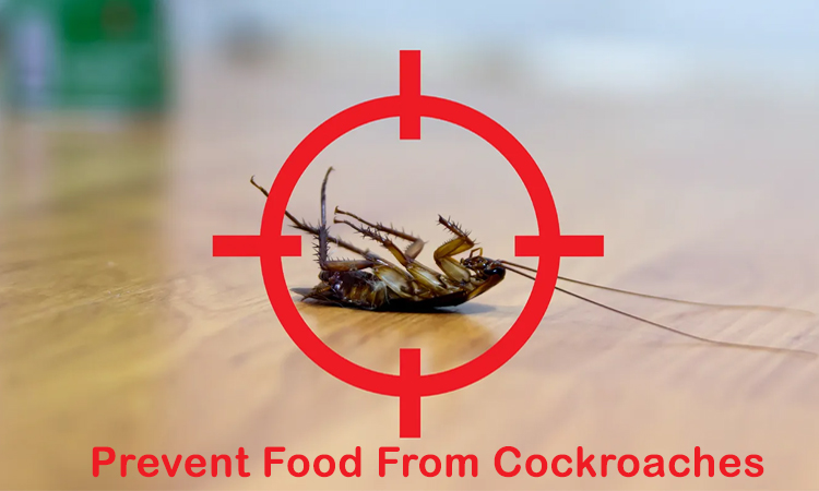 How to Prevent Cockroaches That Spoil the Food?
