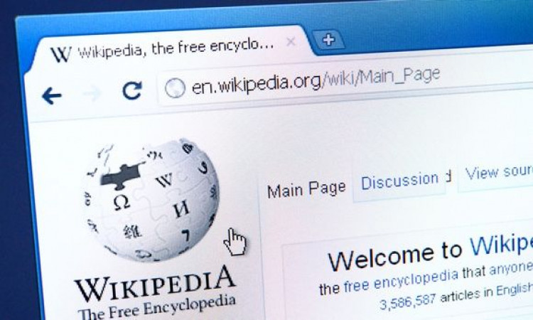 Wikipedia: Everything you must know